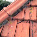 Roofers Edinburgh, Roofing Edinburgh, NFRC